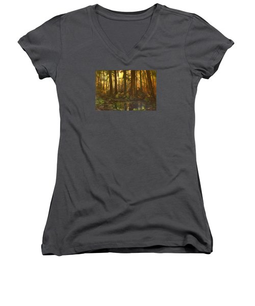 Early Morning Sun On Cannock Chase Women's V-Neck T-Shirt