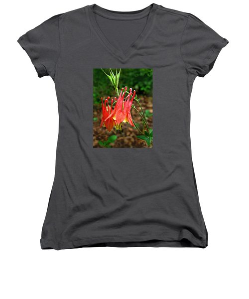 Wild Eastern Columbine Women's V-Neck T-Shirt (Junior Cut) by William Tanneberger