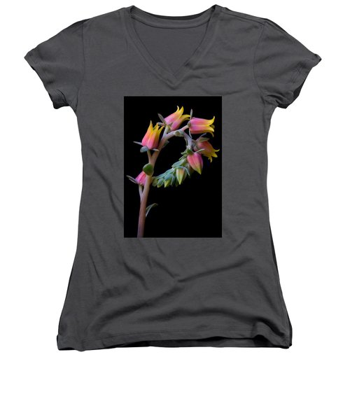 Echeveria Women's V-Neck