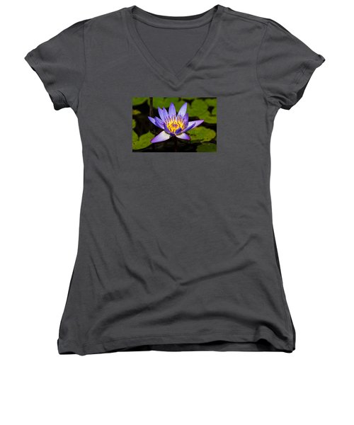 Egyptian Blue Water Lily  Women's V-Neck T-Shirt (Junior Cut) by Scott Carruthers