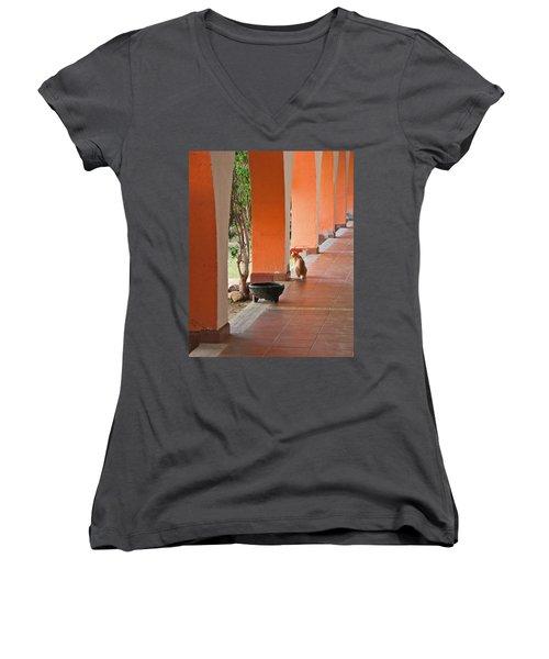Women's V-Neck T-Shirt (Junior Cut) featuring the photograph El Gato by Marcia Socolik