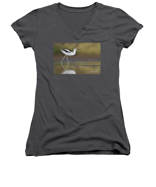 Elegant Avocet Women's V-Neck T-Shirt