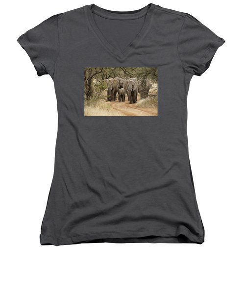 Elephants Have The Right Of Way Women's V-Neck (Athletic Fit)