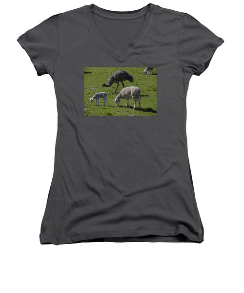 Emu And Sheep Women's V-Neck (Athletic Fit)