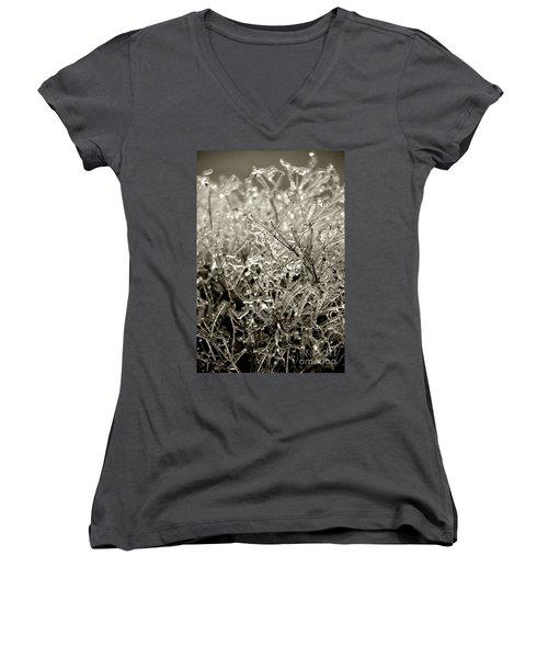Encased In Ice IIi Women's V-Neck T-Shirt