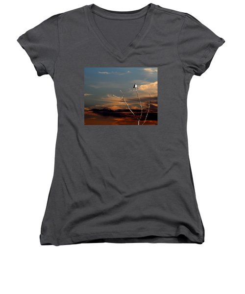 End Of The Day Women's V-Neck T-Shirt (Junior Cut) by John Freidenberg