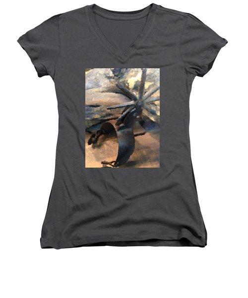 Equestrian Discipline Women's V-Neck T-Shirt