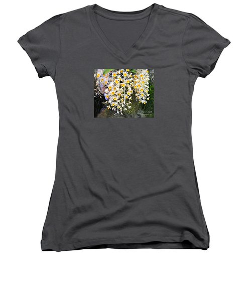 Exotic Aerides Women's V-Neck T-Shirt (Junior Cut) by The Art of Alice Terrill
