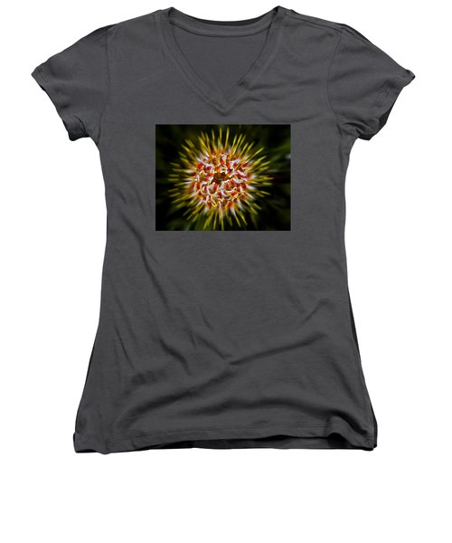 Explosion Women's V-Neck T-Shirt