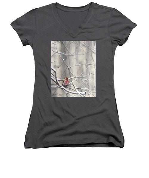 Eyeing The Feeder Alaskan Redpoll In Winter Women's V-Neck T-Shirt