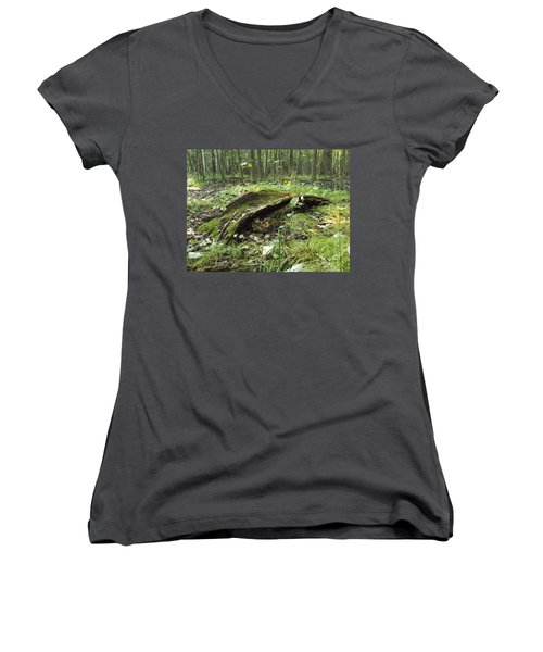 Fairy Bridge  Women's V-Neck T-Shirt