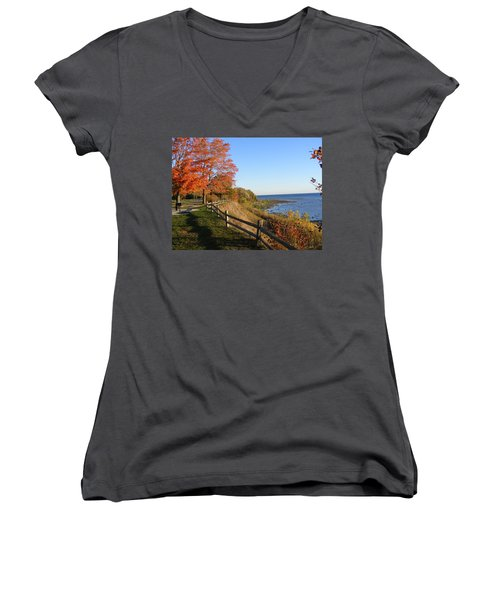 Fall Beauty Women's V-Neck (Athletic Fit)