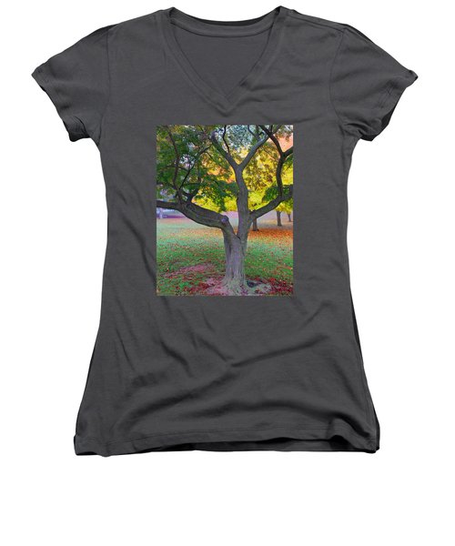 Women's V-Neck T-Shirt (Junior Cut) featuring the photograph Fall Color by Lisa Phillips