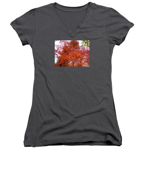Fall Colors 6359 Women's V-Neck T-Shirt (Junior Cut) by En-Chuen Soo