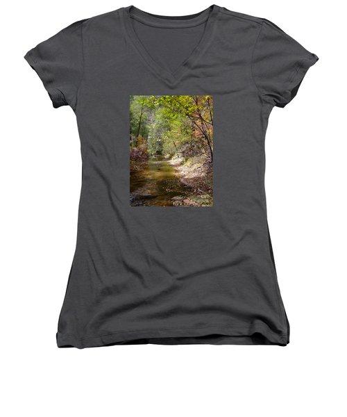 Fall Colors 6379 Women's V-Neck T-Shirt (Junior Cut) by En-Chuen Soo