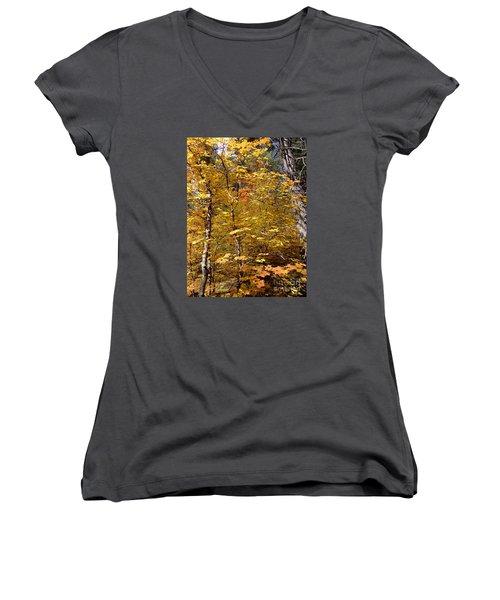 Fall Colors 6446 Women's V-Neck T-Shirt (Junior Cut) by En-Chuen Soo