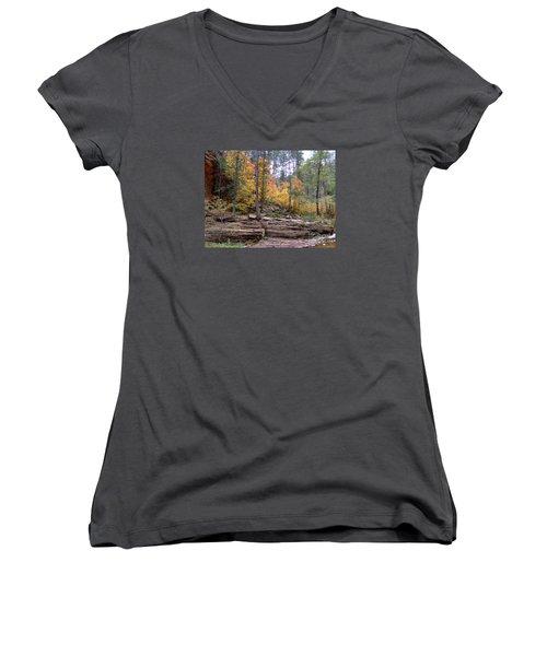 Fall Colors 6463-02 Women's V-Neck T-Shirt (Junior Cut) by En-Chuen Soo