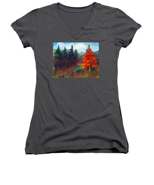 Fall Day Women's V-Neck T-Shirt