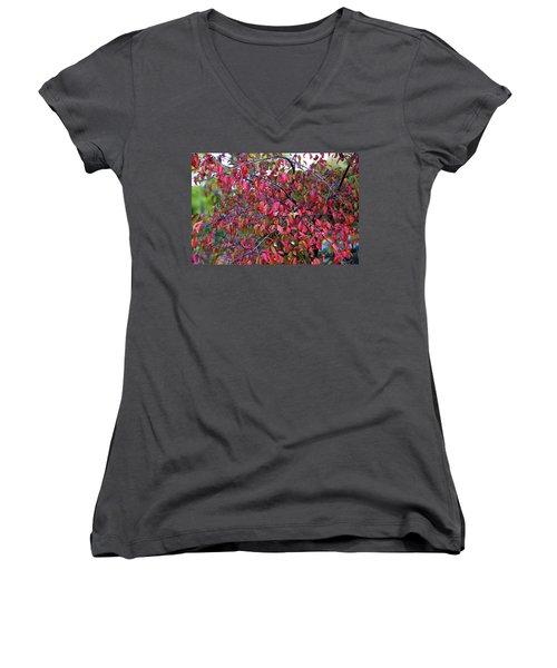 Fall Foliage Colors 05 Women's V-Neck