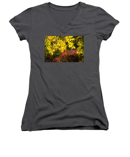 Fall Medley Women's V-Neck