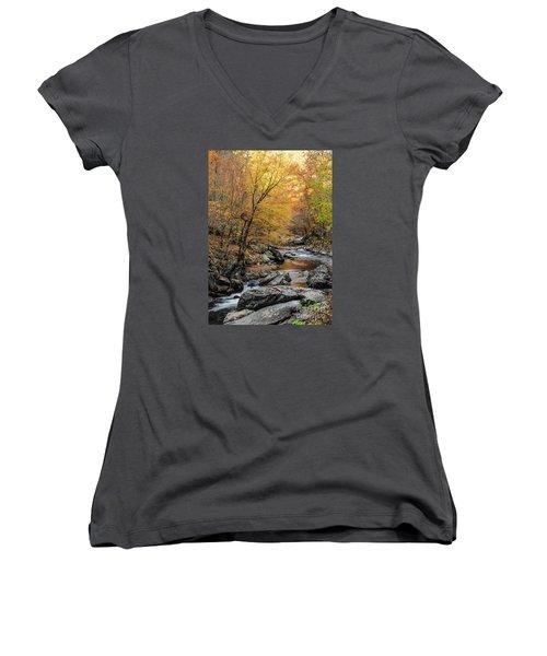 Women's V-Neck T-Shirt (Junior Cut) featuring the photograph Fall Mountain Stream by Debbie Green