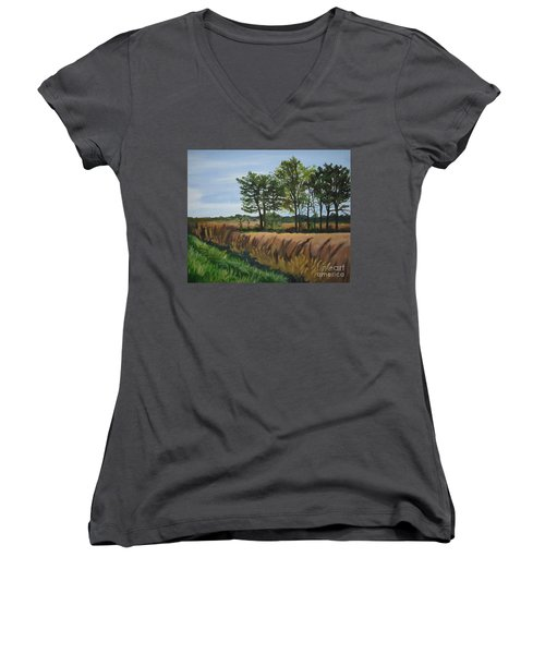 Fall On Douglas Road Women's V-Neck (Athletic Fit)