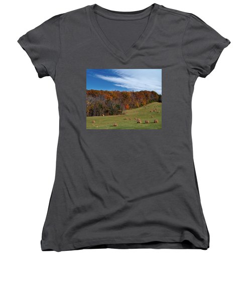 Fall On The Farm Women's V-Neck (Athletic Fit)