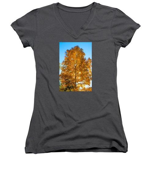 Fall Tree Women's V-Neck