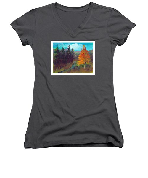 Fall View Women's V-Neck T-Shirt (Junior Cut) by C Sitton