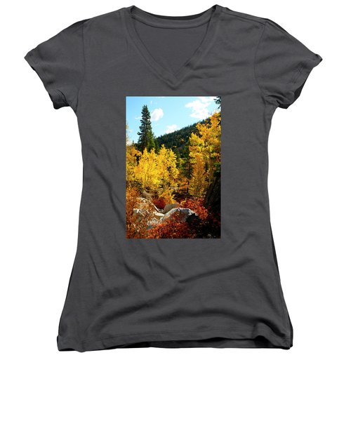Fall2 Women's V-Neck T-Shirt