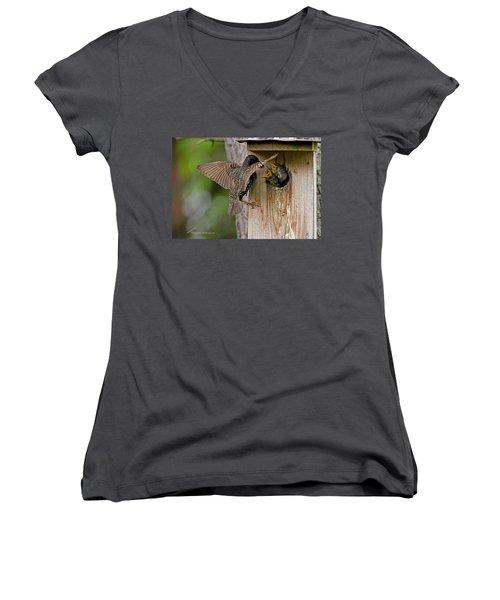 Feeding Starlings Women's V-Neck T-Shirt