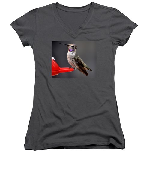 Women's V-Neck T-Shirt (Junior Cut) featuring the photograph Female Anna's Hummingbird On Perch Posing For Her Supper by Jay Milo
