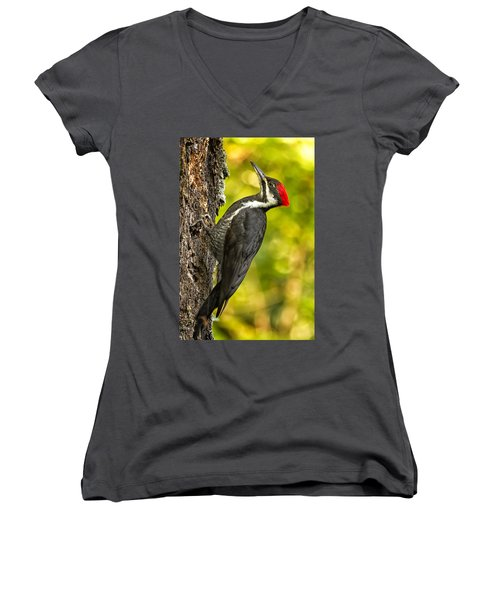 Female Pileated Woodpecker No. 2 Women's V-Neck (Athletic Fit)