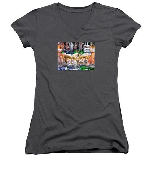 Fence Women's V-Neck T-Shirt (Junior Cut) by Oleg Zavarzin