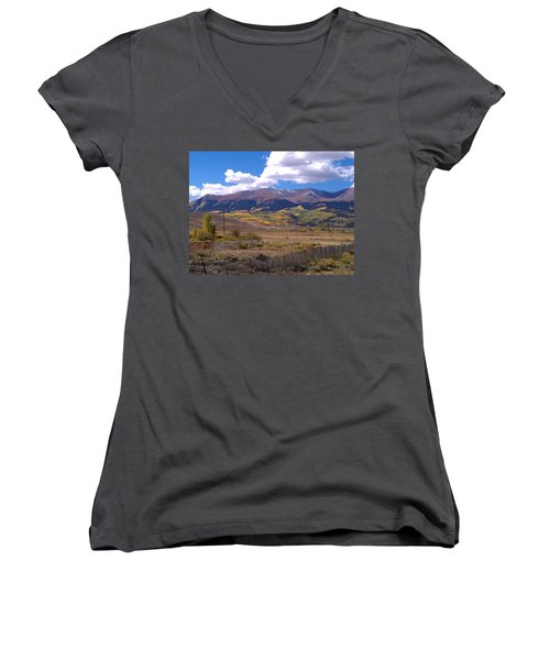 Fenced Nature Women's V-Neck T-Shirt