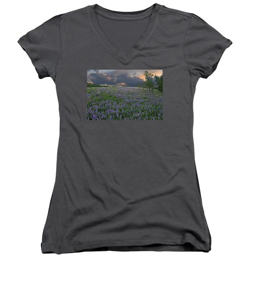Field Of Lupine Women's V-Neck T-Shirt (Junior Cut) by Ed Hall