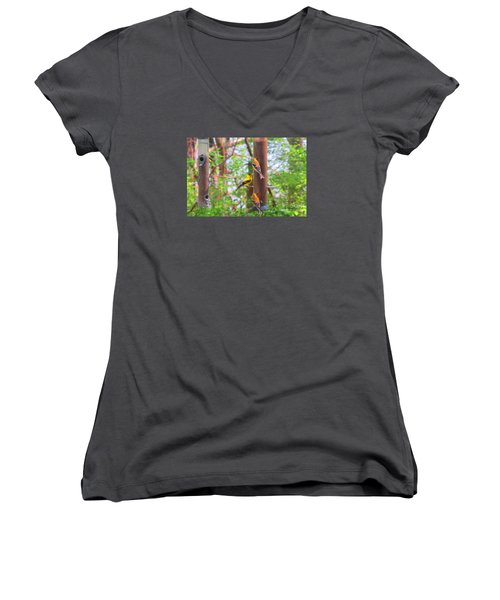 Women's V-Neck T-Shirt (Junior Cut) featuring the photograph Finches Enjoying Their Snack by Tina M Wenger