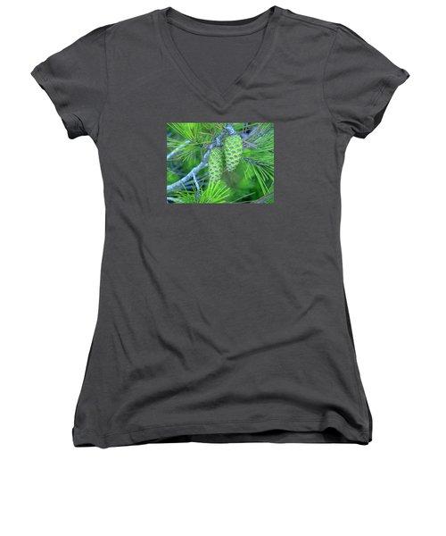 Fir Cones Women's V-Neck T-Shirt
