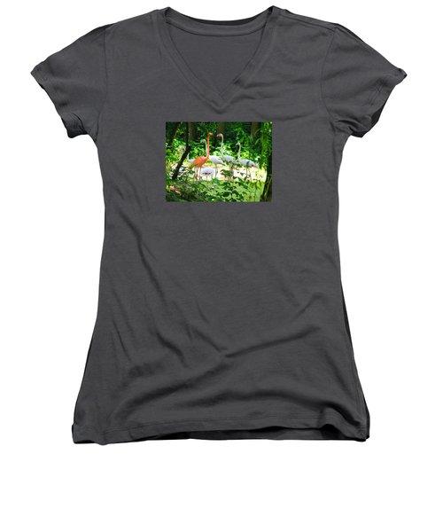 Flamingo Women's V-Neck T-Shirt (Junior Cut) by Oleg Zavarzin