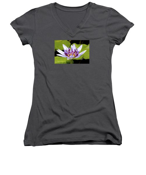 Women's V-Neck T-Shirt (Junior Cut) featuring the photograph Floating Purple Waterlily by Lehua Pekelo-Stearns