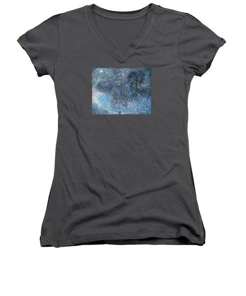 Florida Women's V-Neck T-Shirt