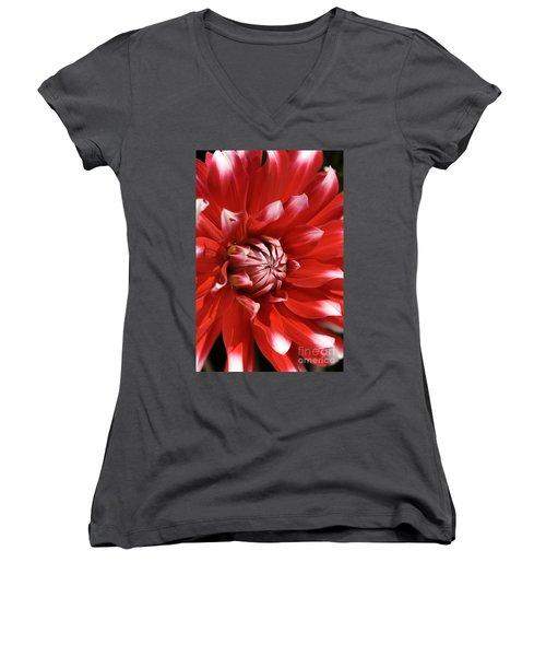 Flower- Dahlia-red-white Women's V-Neck