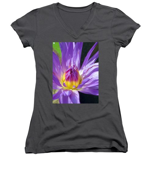 Flower Garden 70 Women's V-Neck T-Shirt