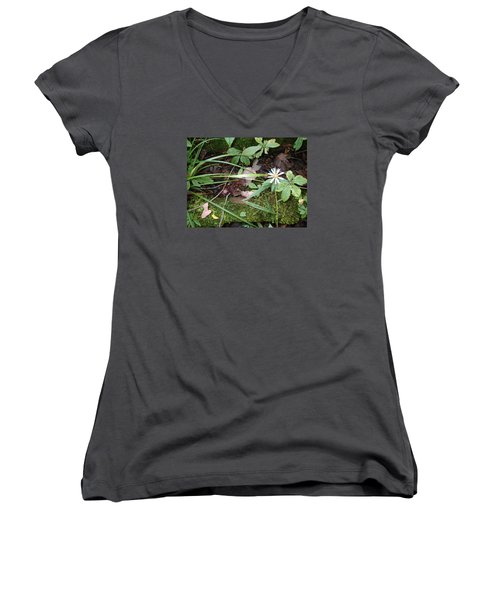 Women's V-Neck T-Shirt (Junior Cut) featuring the photograph Flower In The Woods by Robert Nickologianis