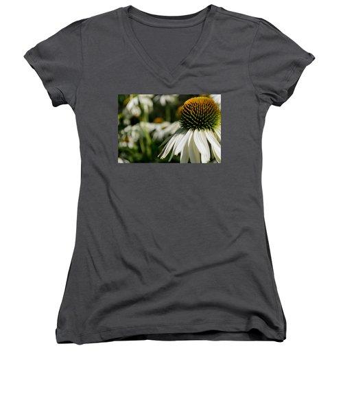Flowers - Echinacea White Swan Women's V-Neck