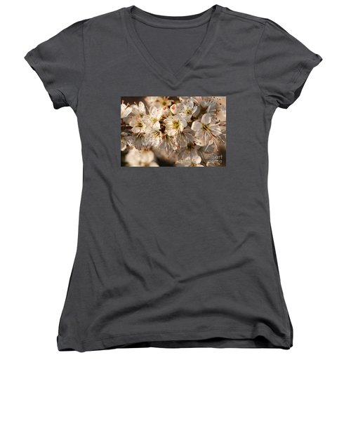 Flowers In The Sunset Women's V-Neck (Athletic Fit)