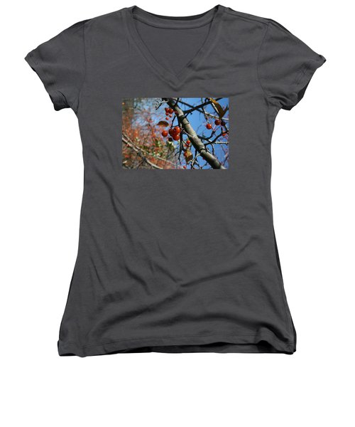 Women's V-Neck T-Shirt (Junior Cut) featuring the photograph Focused by Neal Eslinger