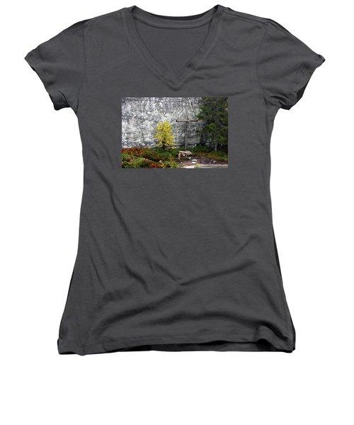 Women's V-Neck T-Shirt (Junior Cut) featuring the photograph Forest Altar by Leena Pekkalainen