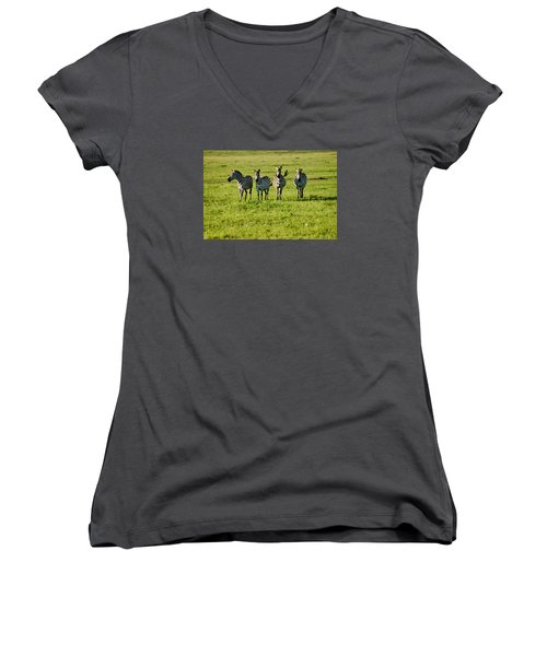Four Zebras Women's V-Neck T-Shirt (Junior Cut) by Menachem Ganon
