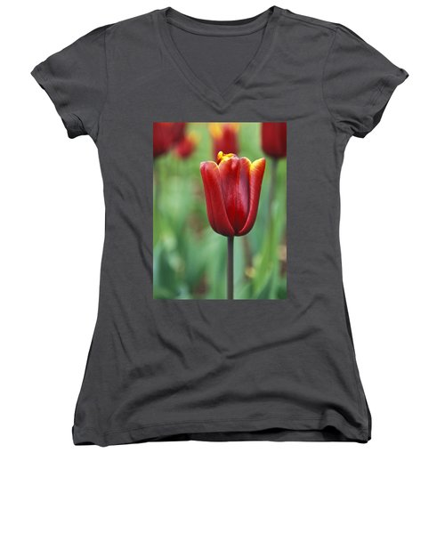 Women's V-Neck T-Shirt (Junior Cut) featuring the photograph Freshness  by Lana Enderle